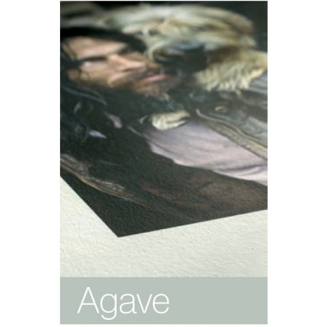 Agave 290g/m²  A3+  Box , 25 Blatt ,Hahnemühle Natural Line