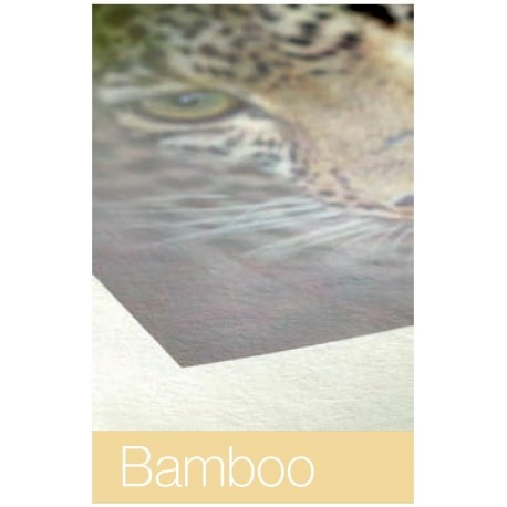 """Bamboo 290g/m² 44"""" x 12m Rolle, Hahnemühle Natural Line"""