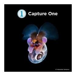Phase One Capture One Pro 12 Downloadkey Fujifilm