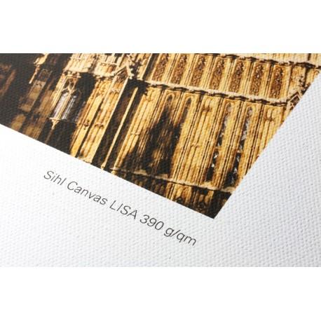 """3647 Lisa Universal Canvas matt 390 g/m², 24"""""""