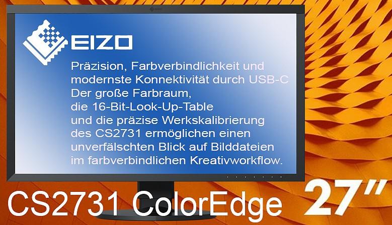 Eizo CS2410